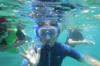 Ischia: l'isola verde….anche sott'acqua