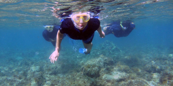 Associazione Nemo per la diffusione della cultura del mare